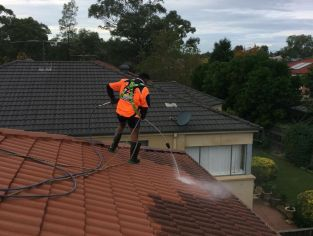 Roof Restoration Penrith - Roof Cleaning